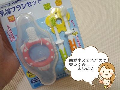 乳歯ブラシセット購入